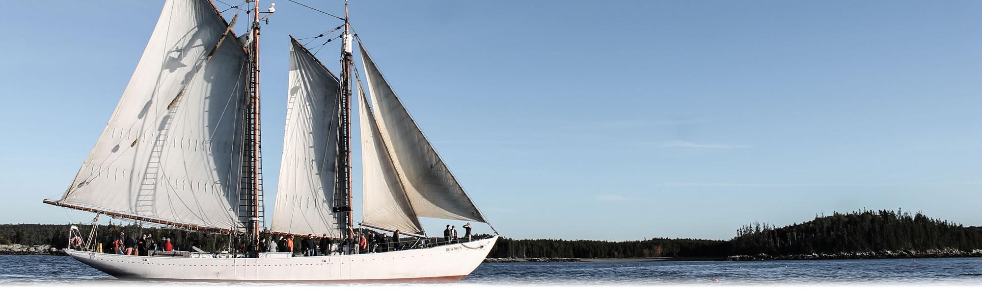 Bowdoin Fall Sails