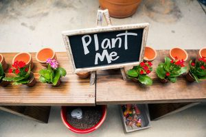 Potting Party - Plant, plants! @ The Waypoint
