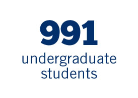 991 undergradutate students