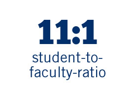 11 to 1 student to faculty ratio