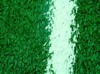New turf on field